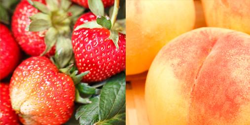 Fruit Pearls